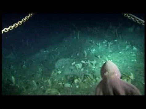 Descubiertas en el fondo del mar   YouTube