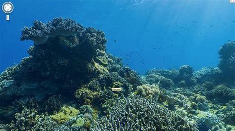 Descubre el fondo del mar a través de Google Maps   ABC.es