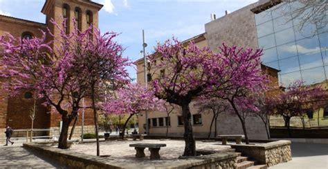 Descubre la vida en Cornellá de Llobregat   Blog Oi Realtor