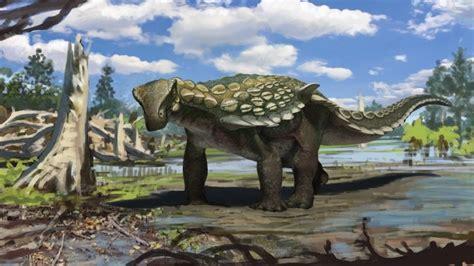 Descubren en España un dinosaurio acorazado que vivió hace ...