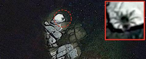 Descubren en Google Earth una araña del tamaño de un ...