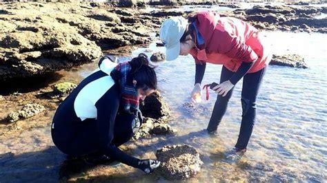 Descubren en La Caleta hasta diez nuevas especies marinas