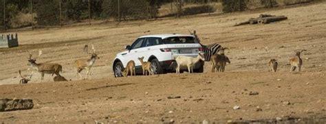 Descuento en la entrada Safari Madrid | Ahorradoras.com