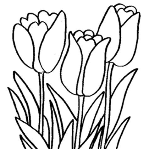Desenho de Flores para Pintar – Educamais