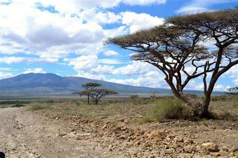 Destino Kenya Tanzania   Paperblog