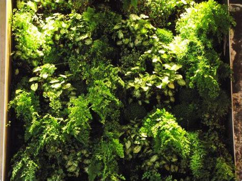 Detalle de pared vegetal realizada por Jardines y Rincones ...