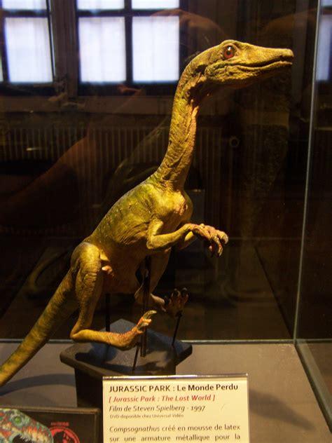Deux reliques de la saga Jurassic Park exposées à Lyon ...