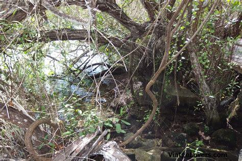 Día 6. Santa Cruz: el Lago de las Ninfas  Fundación ...