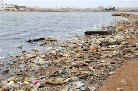 Día Mundial del Agua: Consecuencias de la contaminación ...