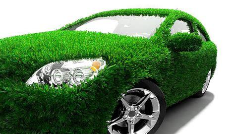 Día mundial del medio ambiente: la importancia de los ...