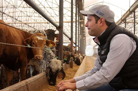 Diario de Puebla   La ganadería impacta en la salud de los ...