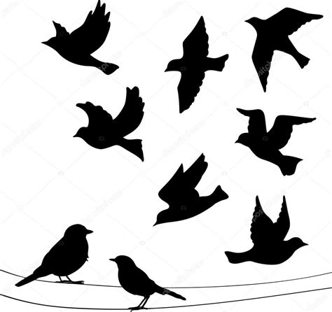 Dibujos: aves silueta   conjunto de siluetas de aves ...