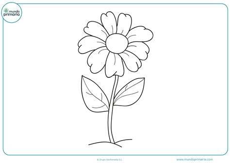 Dibujos de Flores para Colorear 【Bonitas y Fáciles de Pintar】