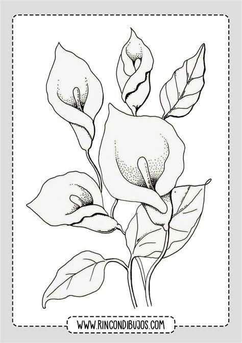Dibujos de Flores Para Imprimir y Colorear   Rincon Dibujos