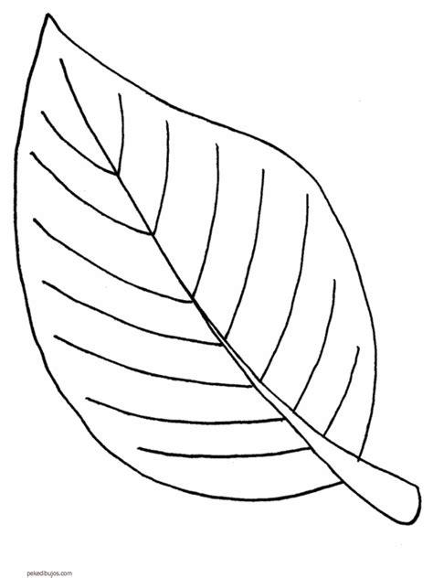 Dibujos de hojas para colorear