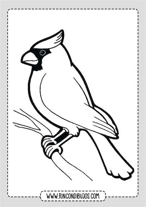 Dibujos de Pájaros para colorear | Imprimir y Colorear