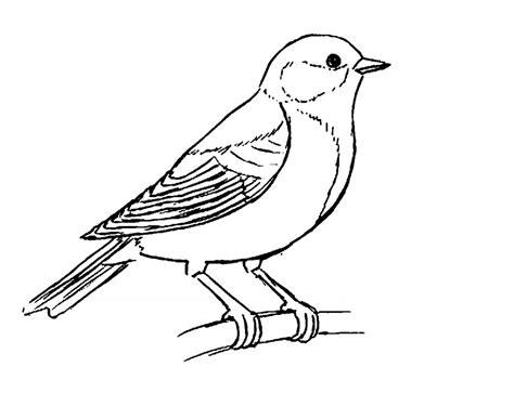 Dibujos De Pajaros Para Imprimir   SEONegativo.com