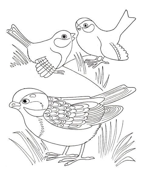 Dibujos de pájaros para pintar. Dibujos de pájaros