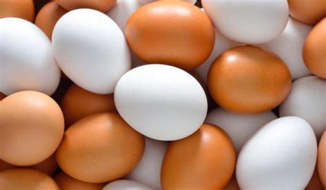 Dicen que los huevos blancos son peores que los huevos de ...