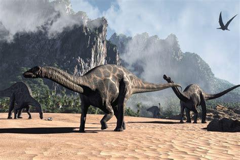 Dicraeosaurus 01 | Amigos de los Dinosaurios y la ...