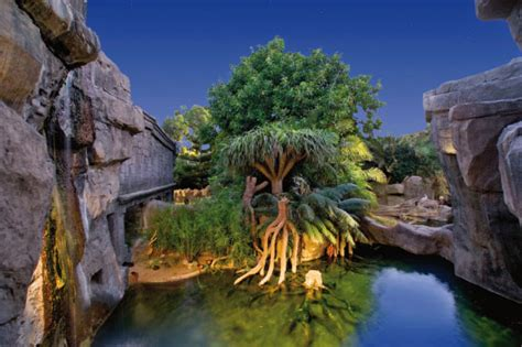 Did You Know You Can Visit the Fuengirola Zoo  Bioparc  at ...