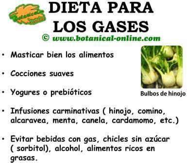 Dieta para el flato, flatulencias o meteorismo | Dietas ...