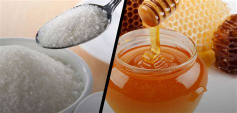 Diferencias entre azúcar y miel de abeja ¿Qué es mas sano ...