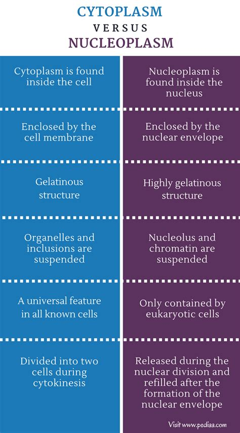 Difference Between Cytoplasm and Nucleoplasm | Definition ...