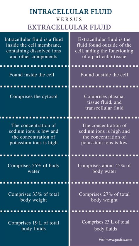 Difference Between Intracellular and Extracellular Fluid ...