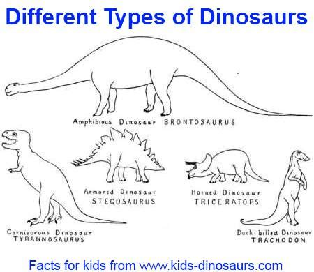 Different kinds of dinosaurs