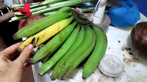 Different Types of Bananas in my Peace Corps Site   YouTube