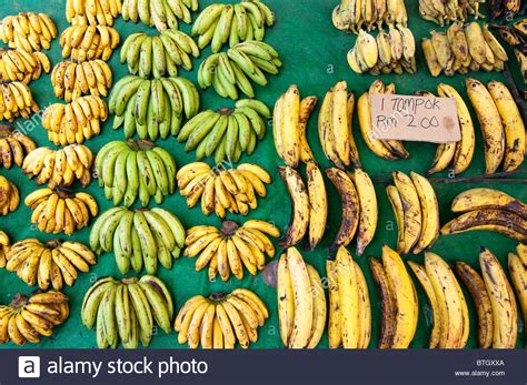 Different Types Of Bananas Stock Photos & Different Types ...