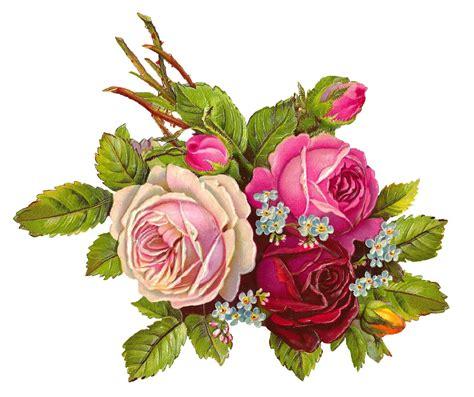 digital rose download   Digital flowers, Vintage flowers ...