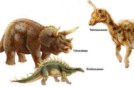 DINO LANDZ: especies de dinosaurios