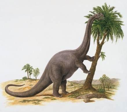 DinoJuan: marzo 2011
