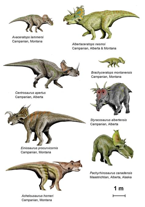 Dinosaur behavior   Wikipedia