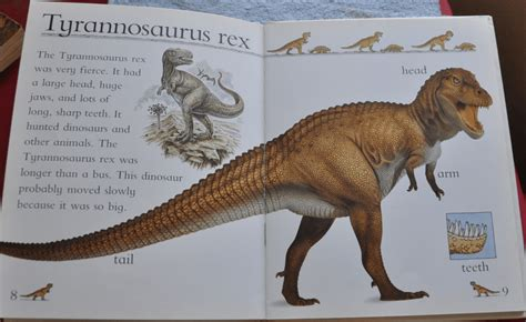 Dinosaur Books for Children   Discoveringdinosaursbook.com