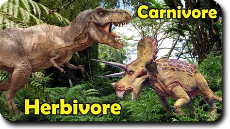 Dinosaur Carnivore VS Herbivore Family Finger Family ...