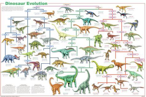 Dinosaur Classification   Forbes Paleo Club