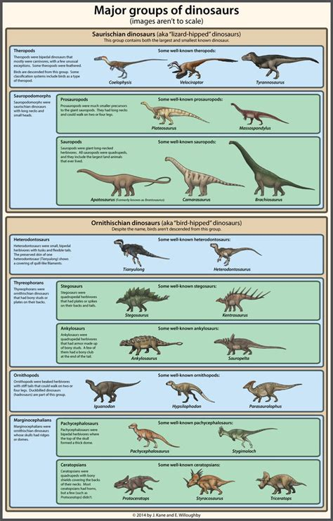 Dinosaur Classification Simplified by EWilloughby on ...