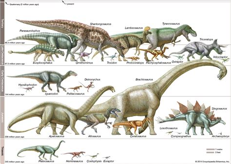 dinosaur classifications   Google Search | Dinosaur ...