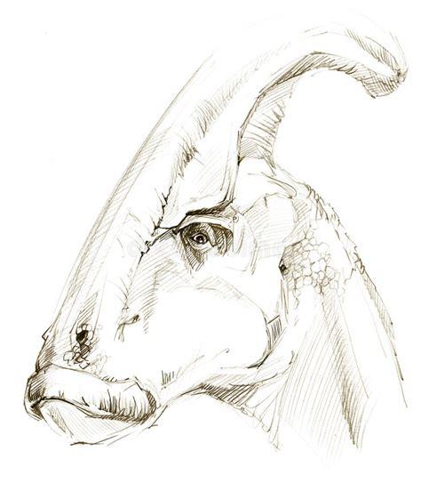 Dinosaur. Dinosaur Drawing Pencil Sketch Stock ...