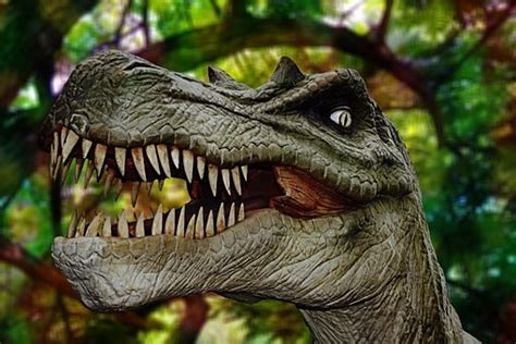 Dinosaur   Free pictures on Pixabay