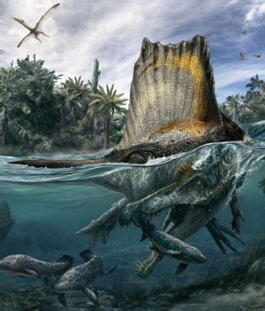 Dinosaur Larger Than T Rex Was a Great Swimmer, Ate Sharks ...