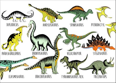 Dinosaur Name Chart / Large / 50cm x 70cm | Dino Raw