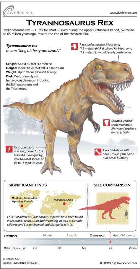 Dinosaur Profile: Tyrannosaurus Rex  Infographic  | Live ...