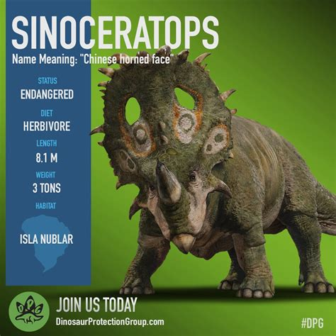 Dinosaur Protection Group: Sinoceratops : JurassicPark