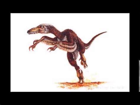 dinosaur sounds velociraptor   YouTube