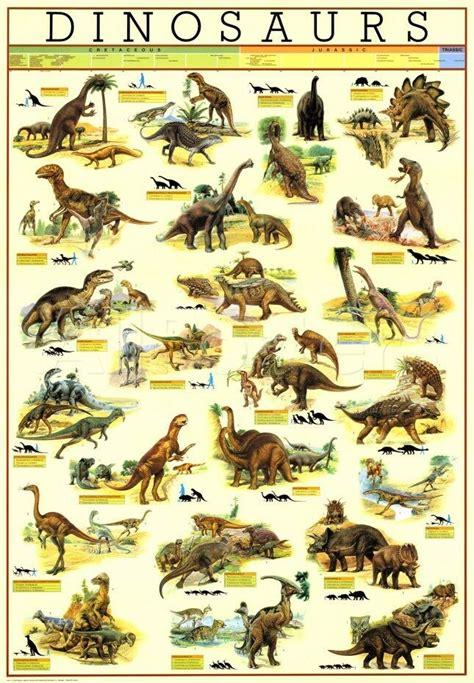 Dinosaur wall chart poster | eBay