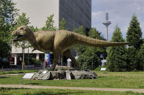 dinosaur   Wiktionary